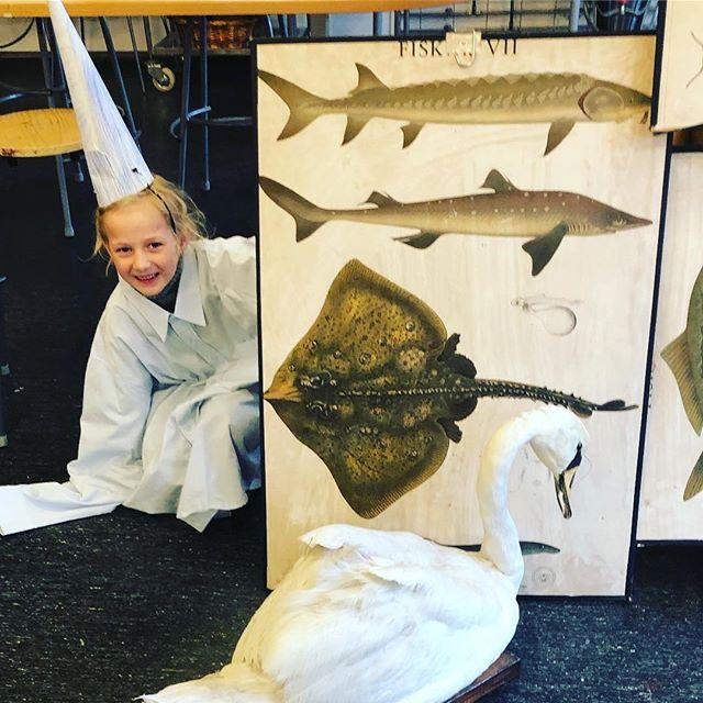 Vi arbejder med kunstvideoer på Skovbo Billedskole #børnekunst #kunst #videokunst