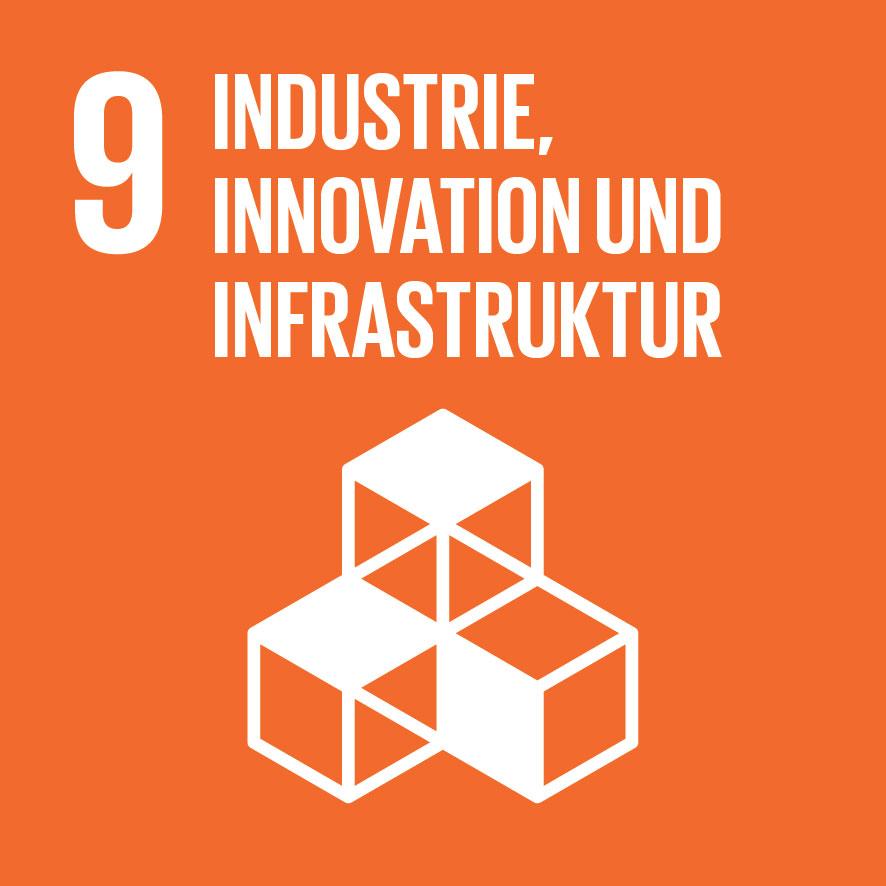 SDG-icon-DE-09.jpg