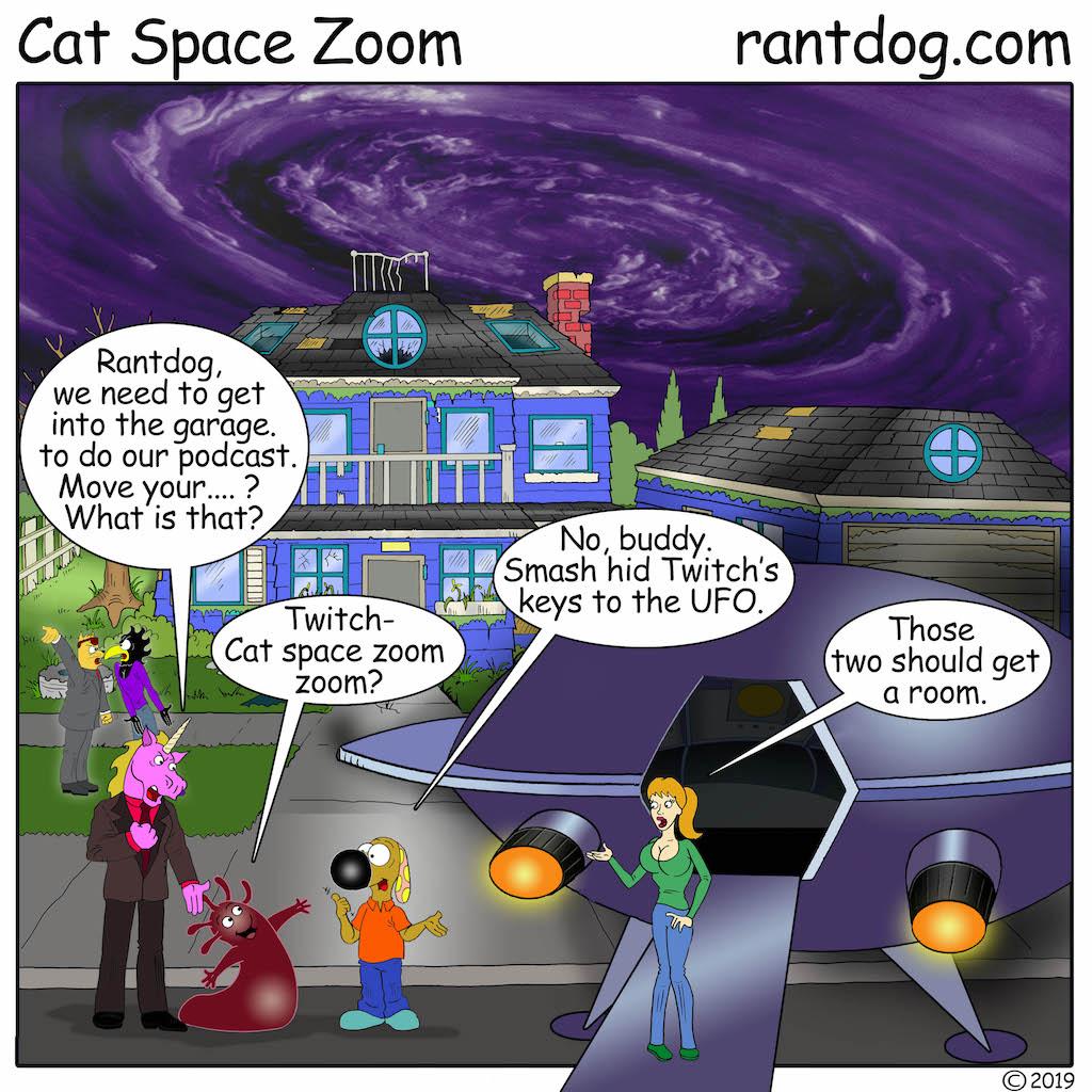 RDC_735_Cat Space Zoom.jpg