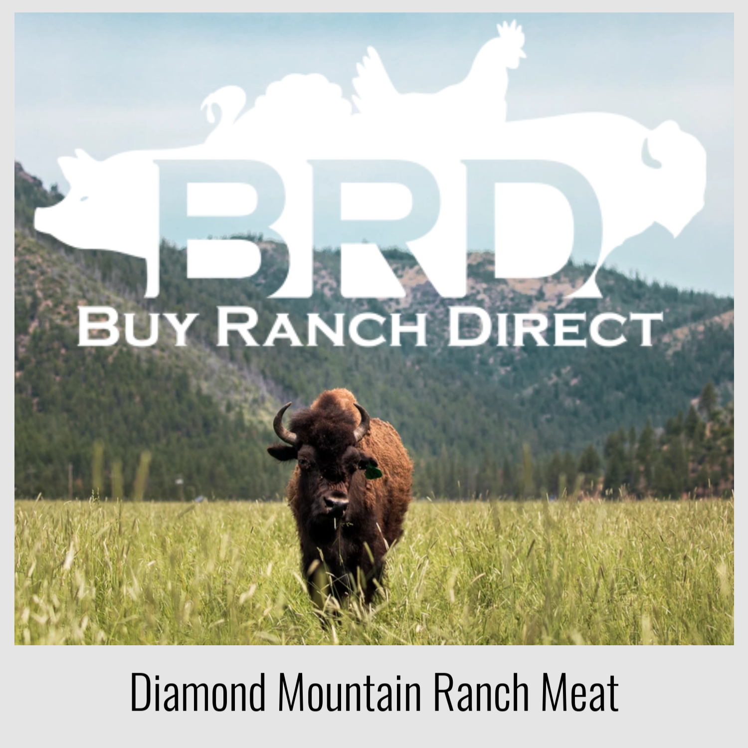 buy ranch direct.png