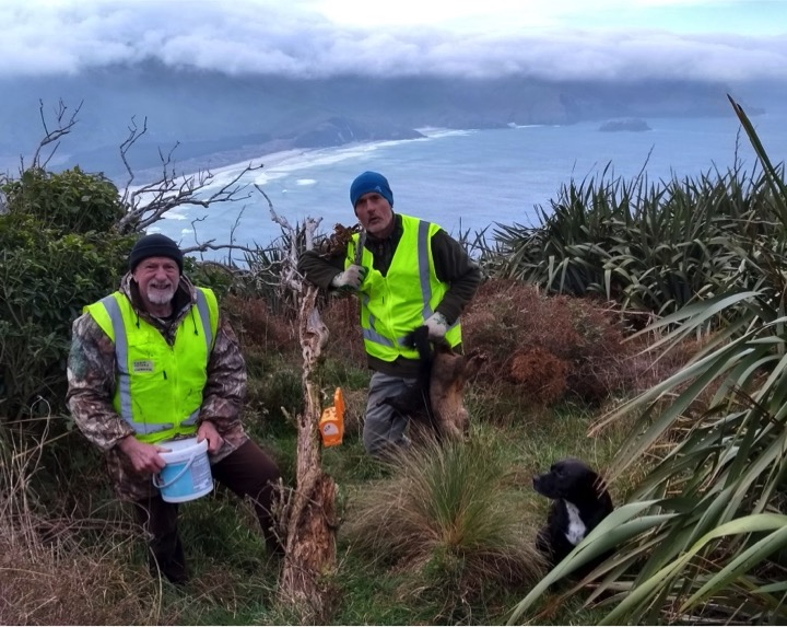 Otago Peninsula Biodiversity Group operation team members Frank Pepers, Mike Lawson and OPBG conservation dog Puku during 2018 possum control operations in Sandymount Reserve.