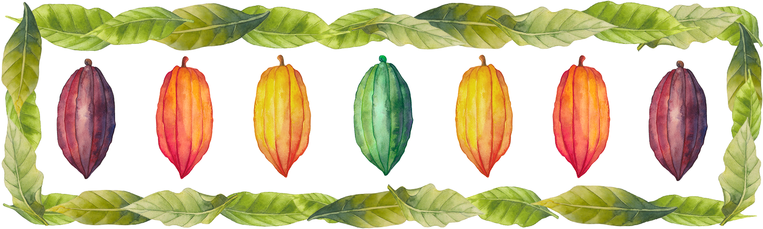 Cacao-Banner.png