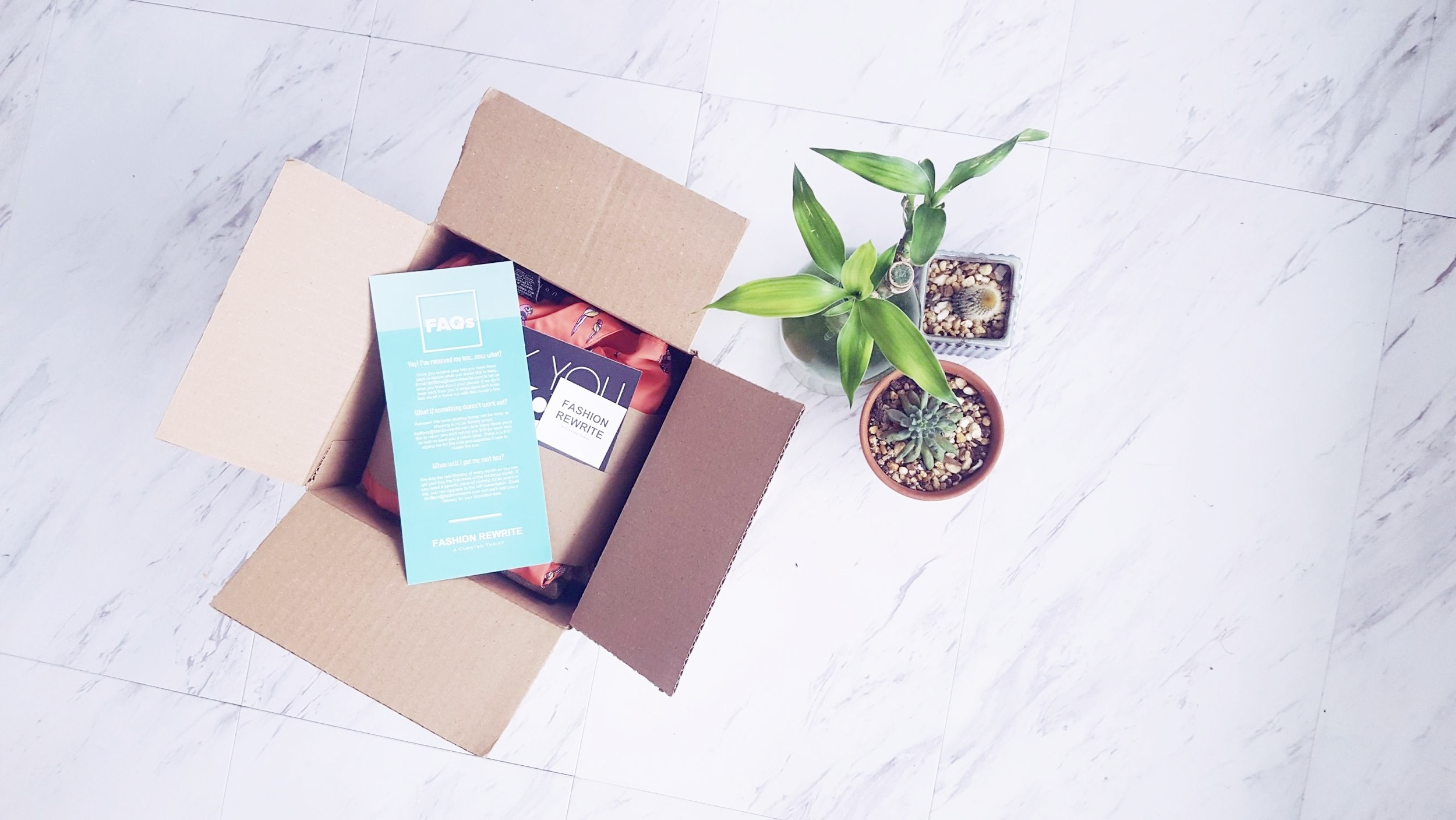 Box with Plant.jpg