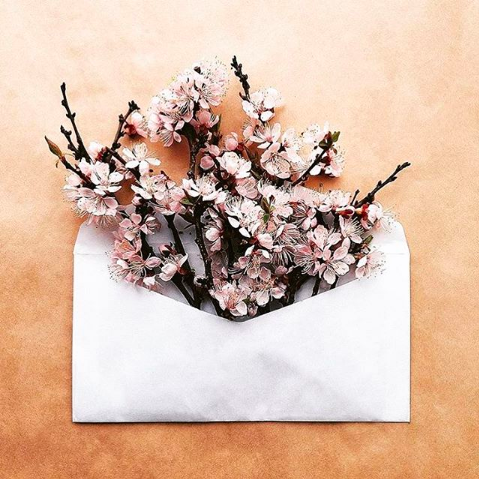 Question: What are you open to receive this spring? • Insight: When you feel open and worthy to receive the beauty, generosity and abundance of life, it flows and grows in surprising ways. • Action: Be open to receive the unexpected gifts that spring brings.