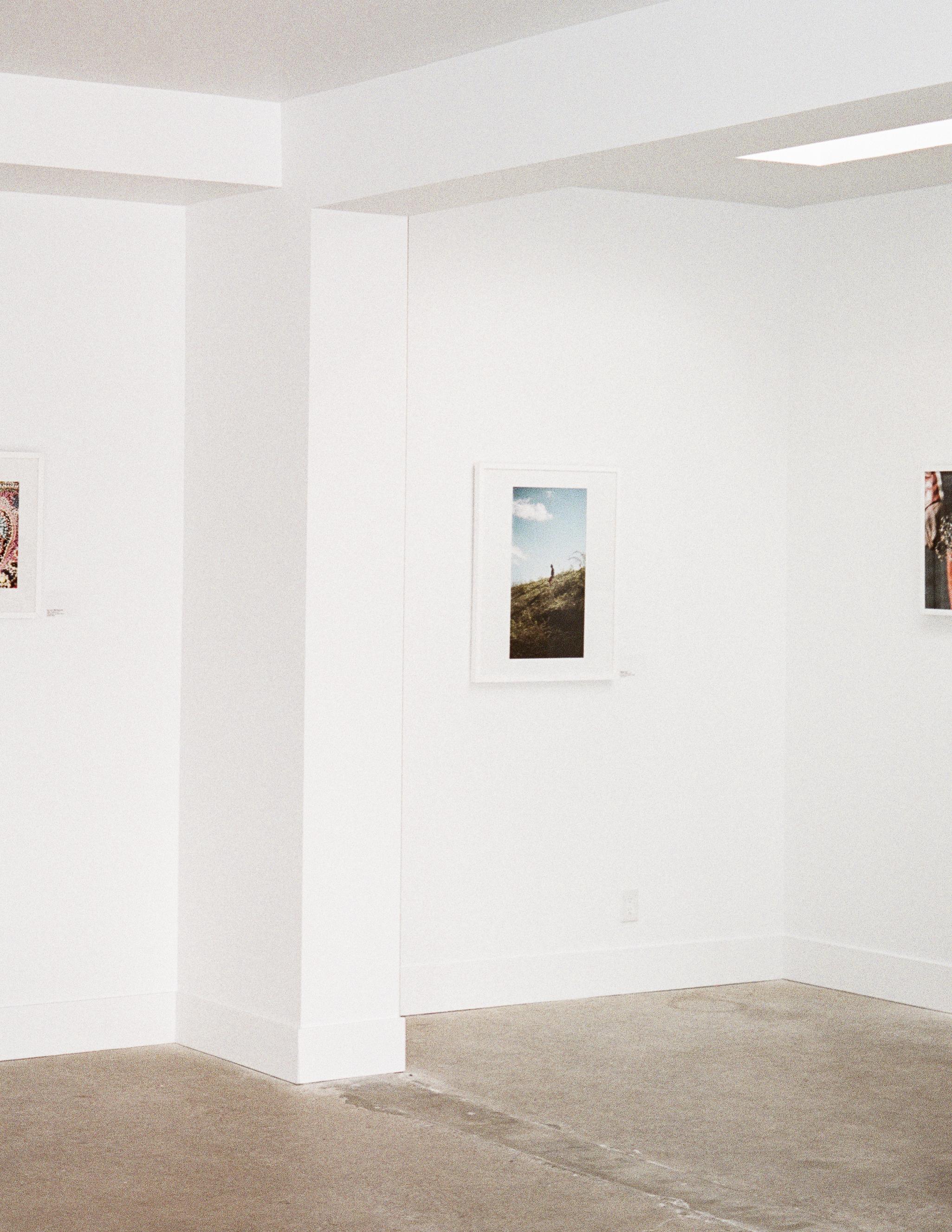 Janeteas_Freudian_Gallery_Finals-8.jpg