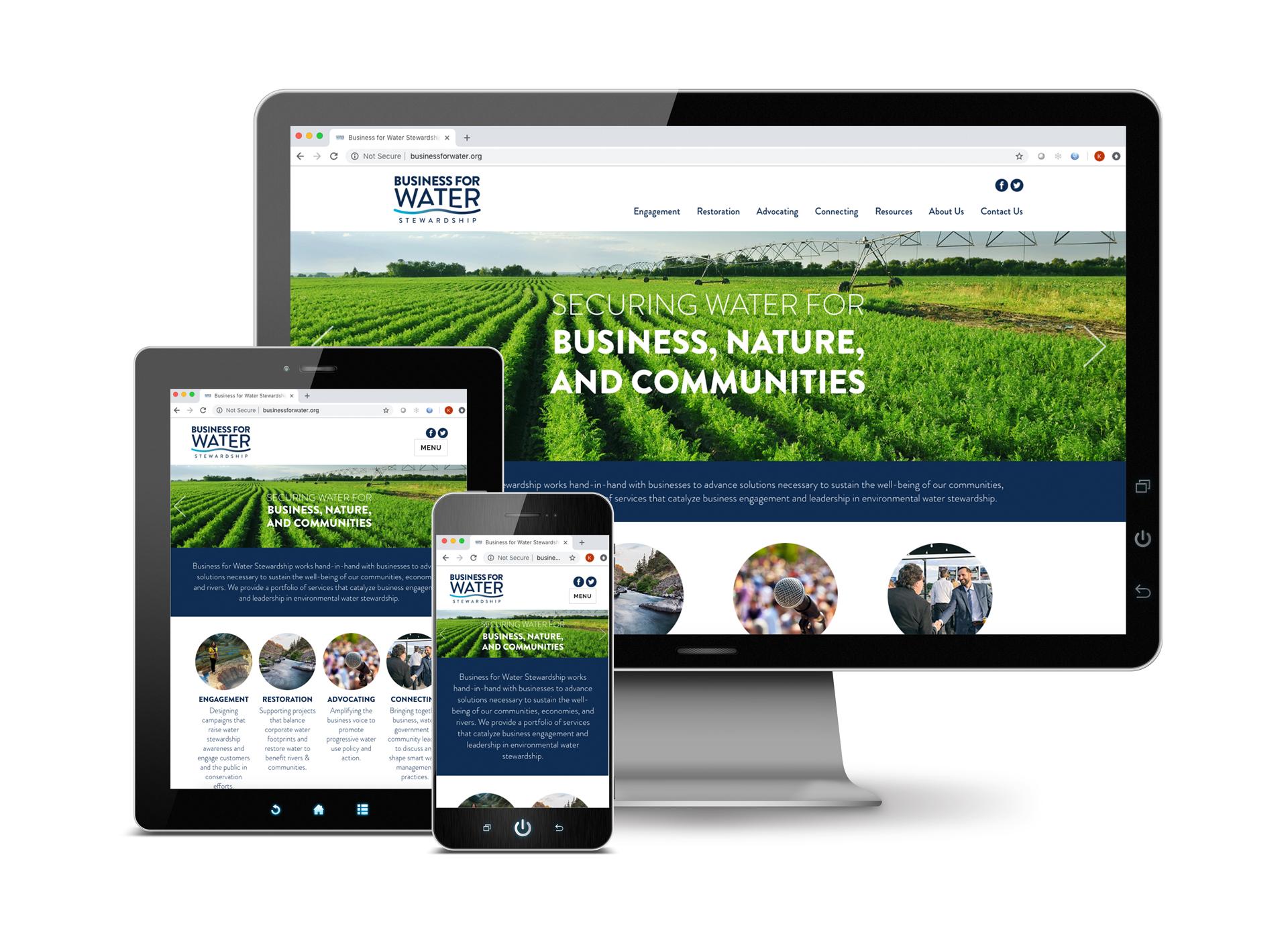 BWS-website.jpg