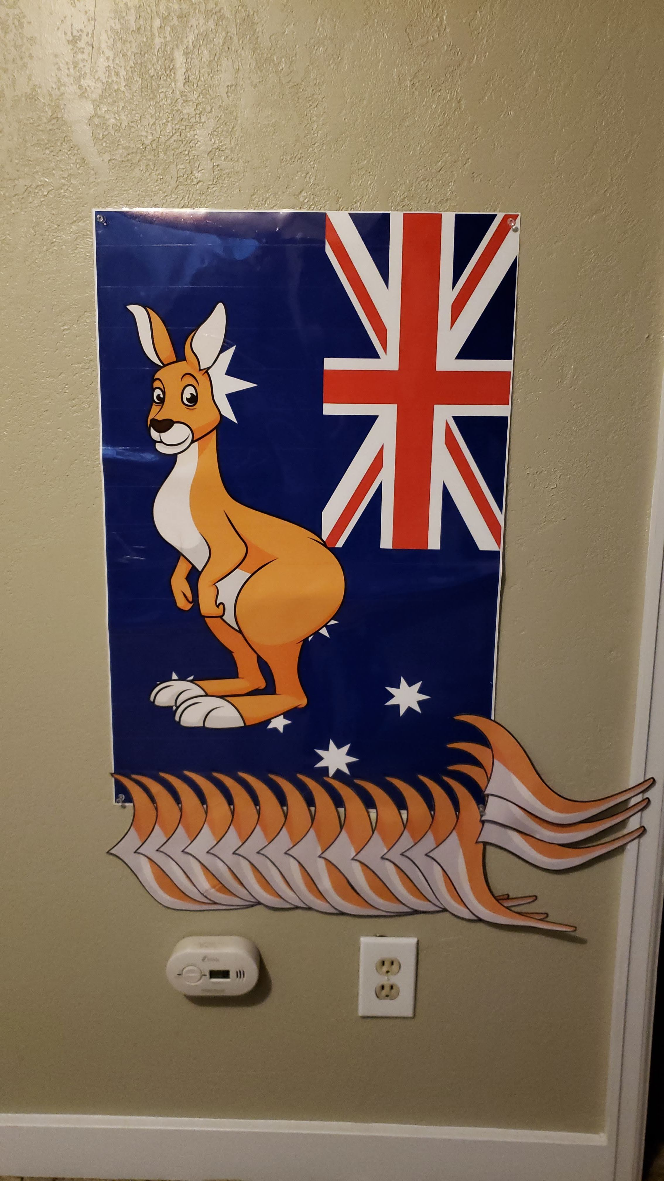 Pin the tail on the kangaroo! My crafty husband designed the kangaroo/poster/tails and we had it printed for less than $10 at Walgreens.