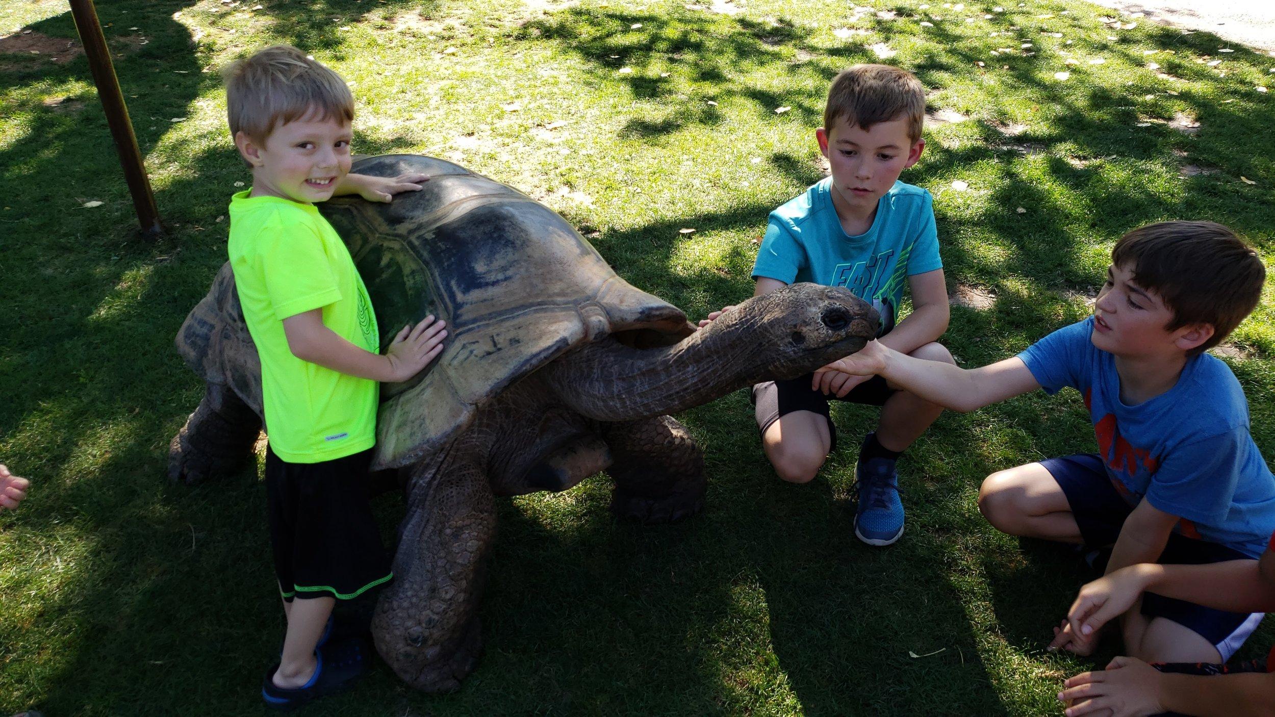 reptile gardens south dakota