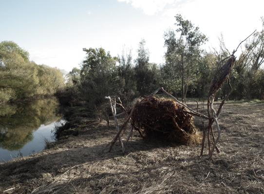 Scotch Oakburn Wetlands Project
