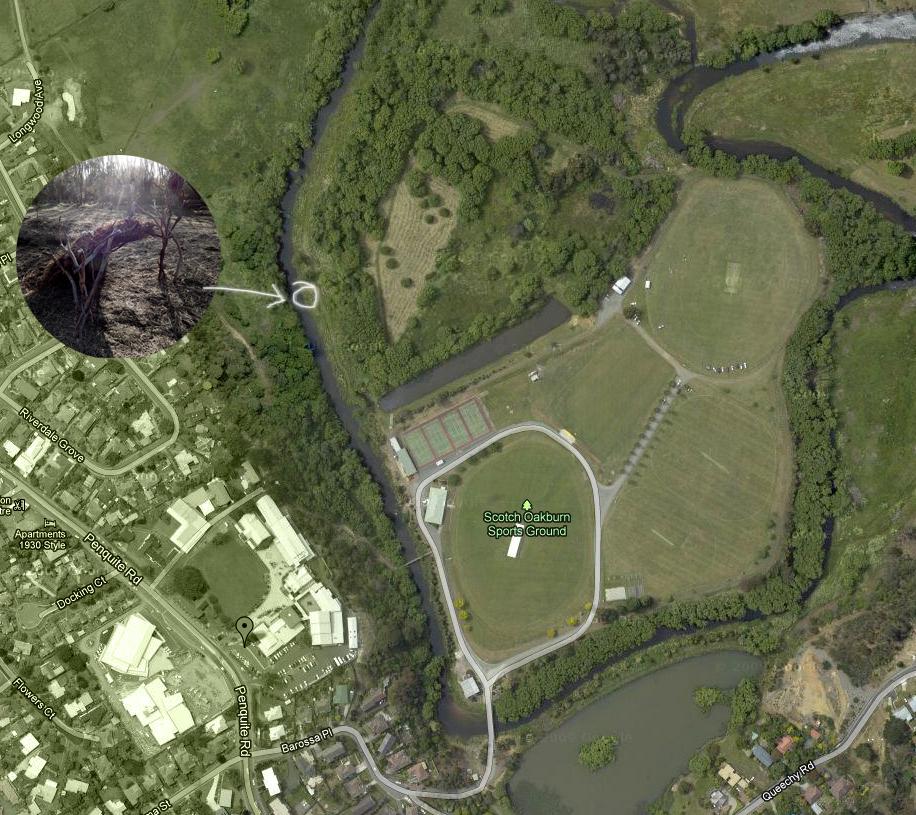wetlandsmap.jpg