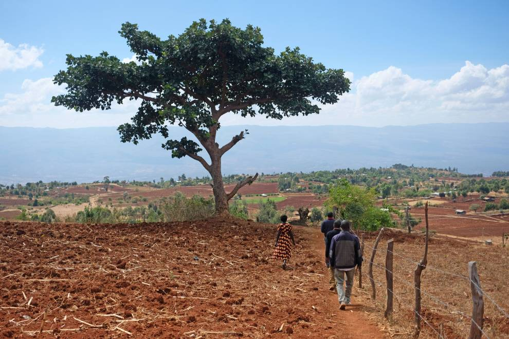 On a walk around a farm in the Hanging Valley, Elgeyo-Marakwet county. © Megan Laws