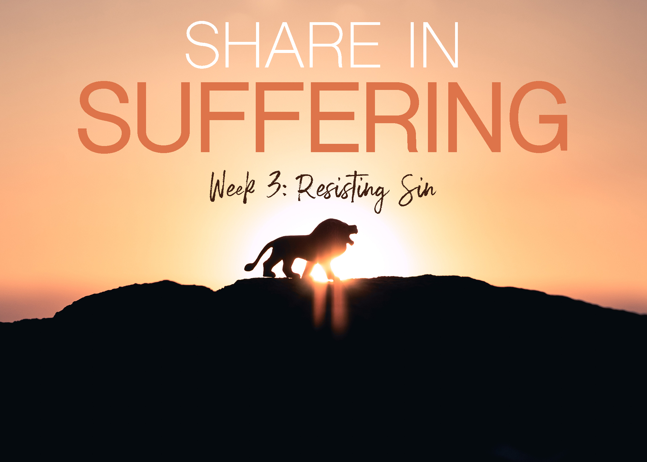 Share in Suffering Week 3.jpg