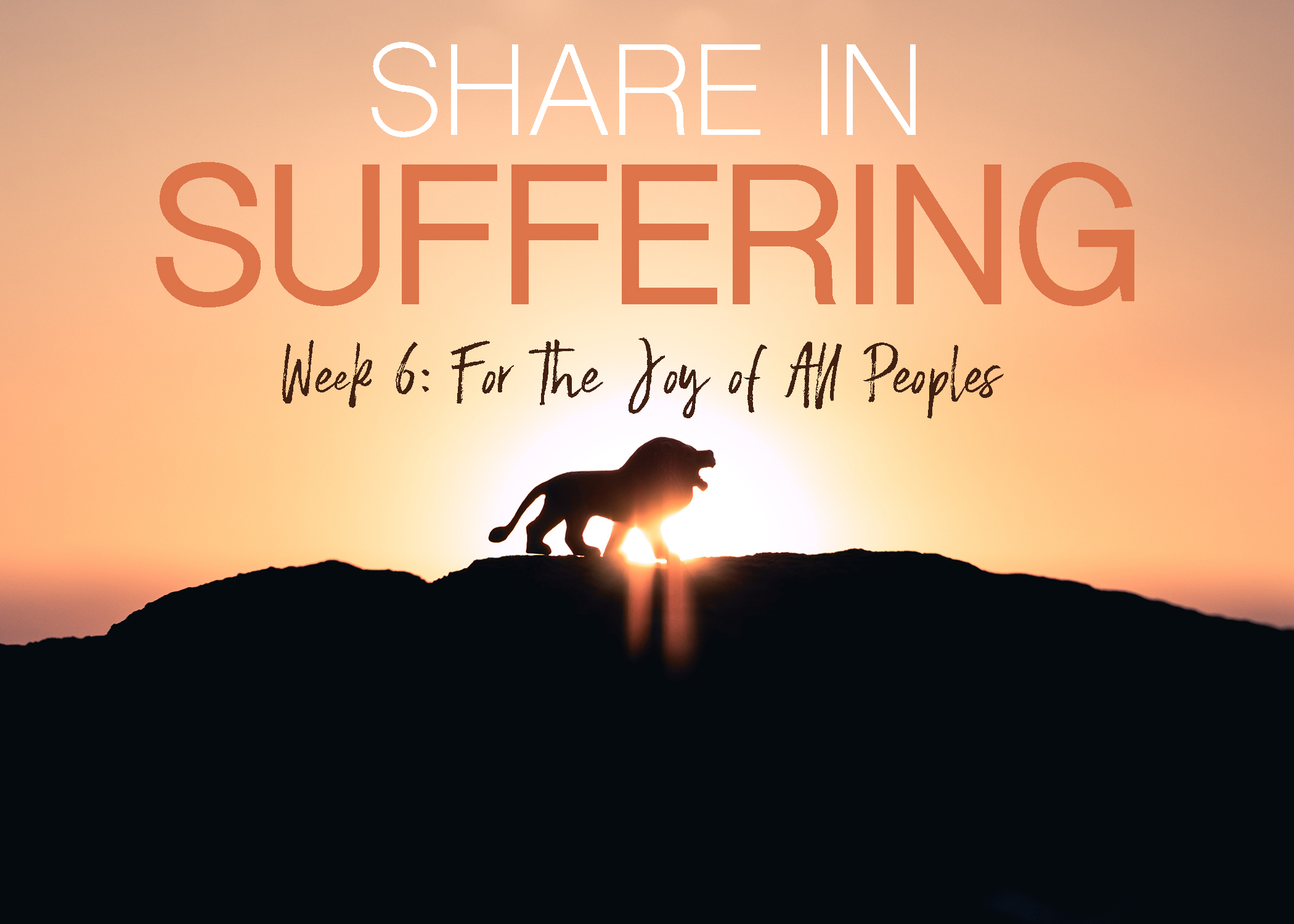 Share in Suffering Week 6.jpg