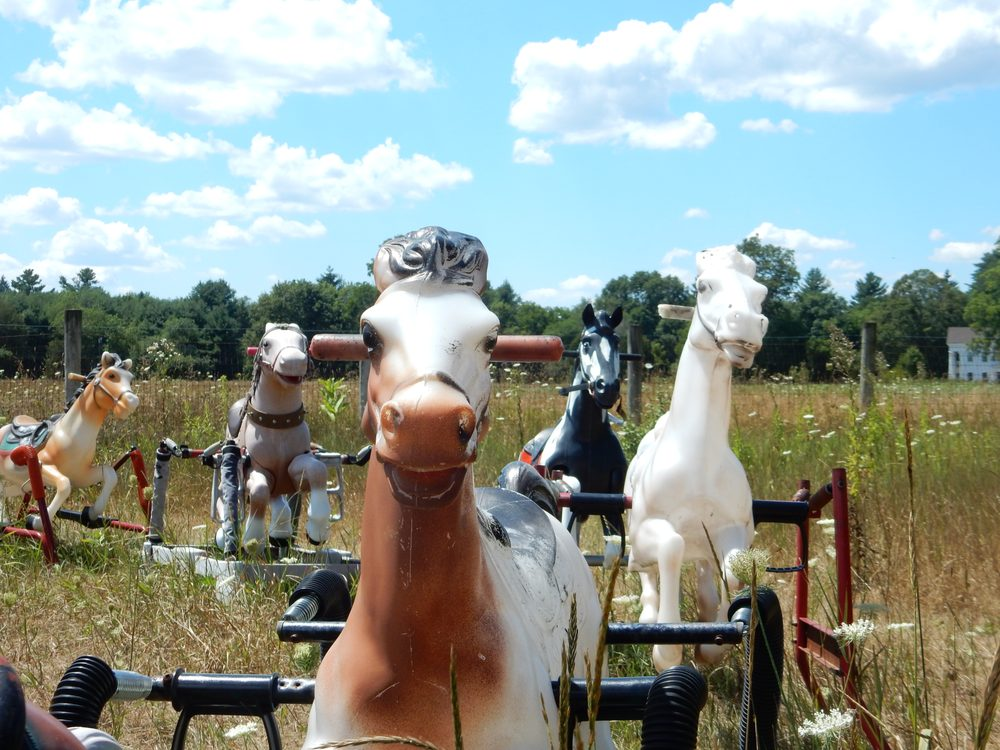 """Ponyhenge"" in Lincoln, Massachusetts. Photo taken from Yelp."