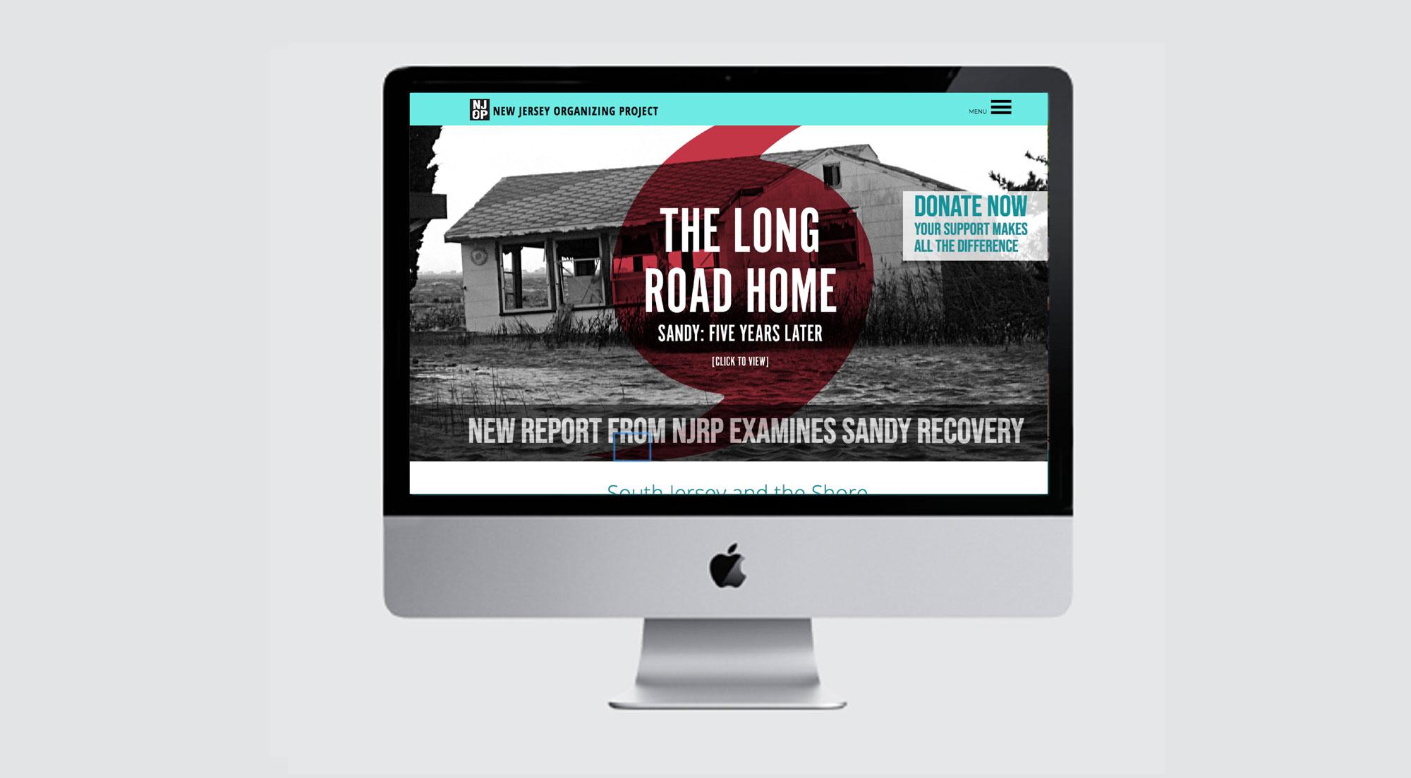 grass-creative-branding-identity-responsive-website-design-art-direction-non-profit-NJOP.jpg