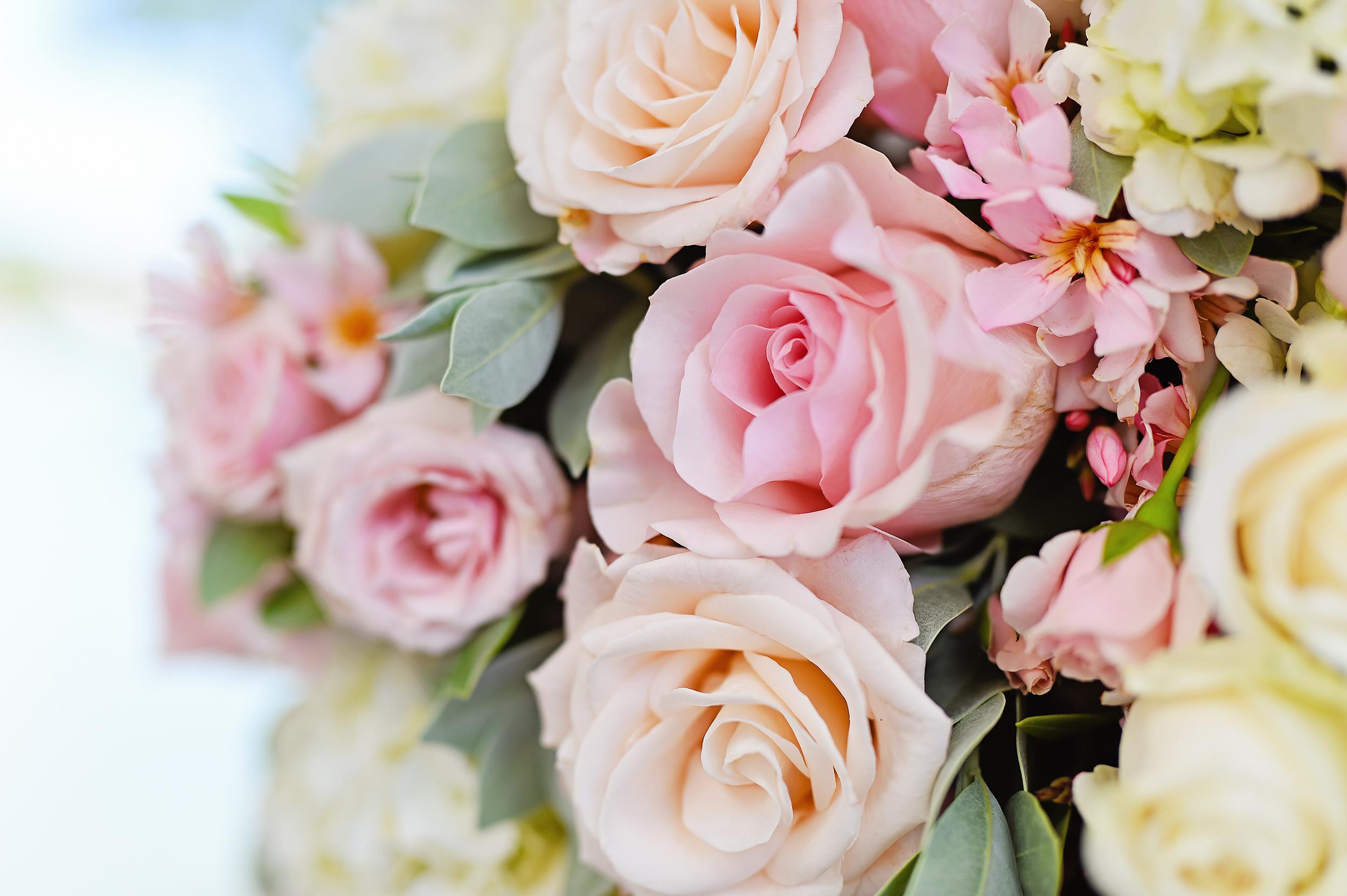 Destination Wedding Packages - Villa Norbu Weddings