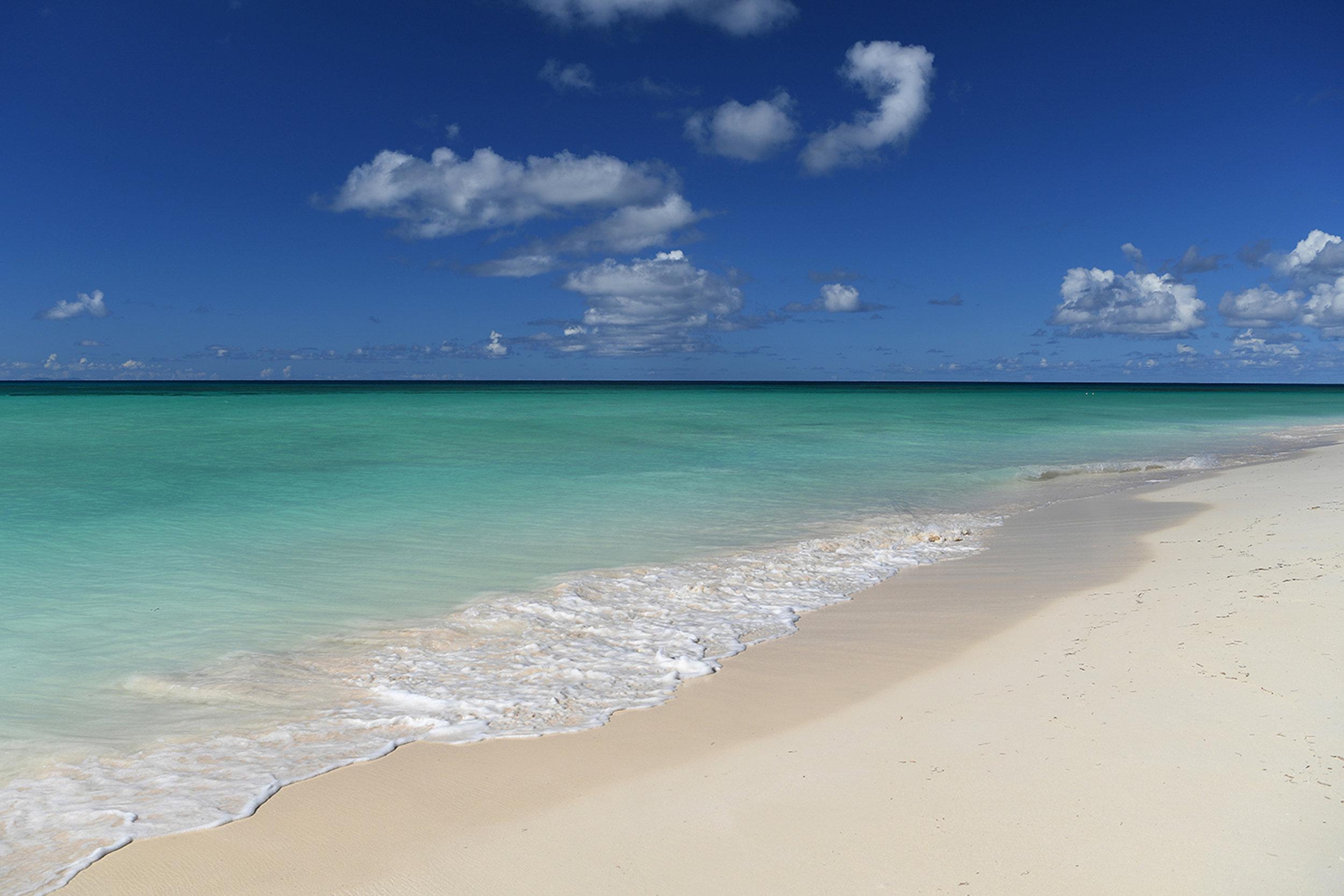 Anegada - Caribbean Queen Conch - Norbu Adventures