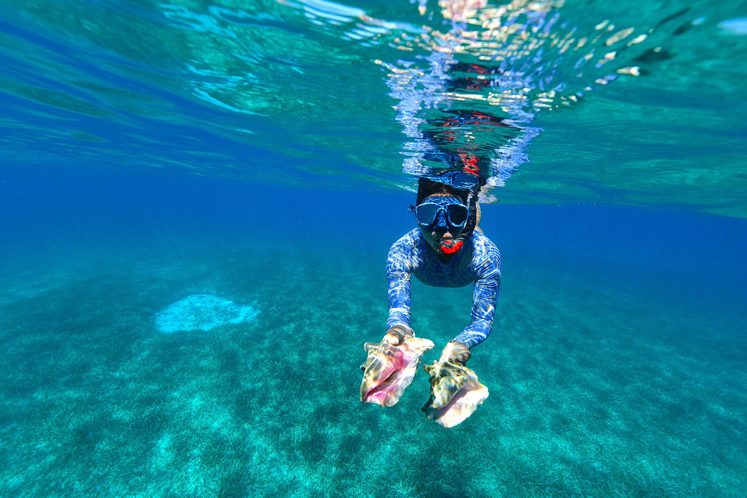 Conch Diving - diving in the Virgin islands - Blue Glass Photography