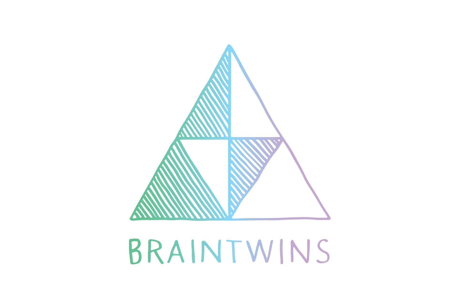 braintwinsLogo2016.jpg