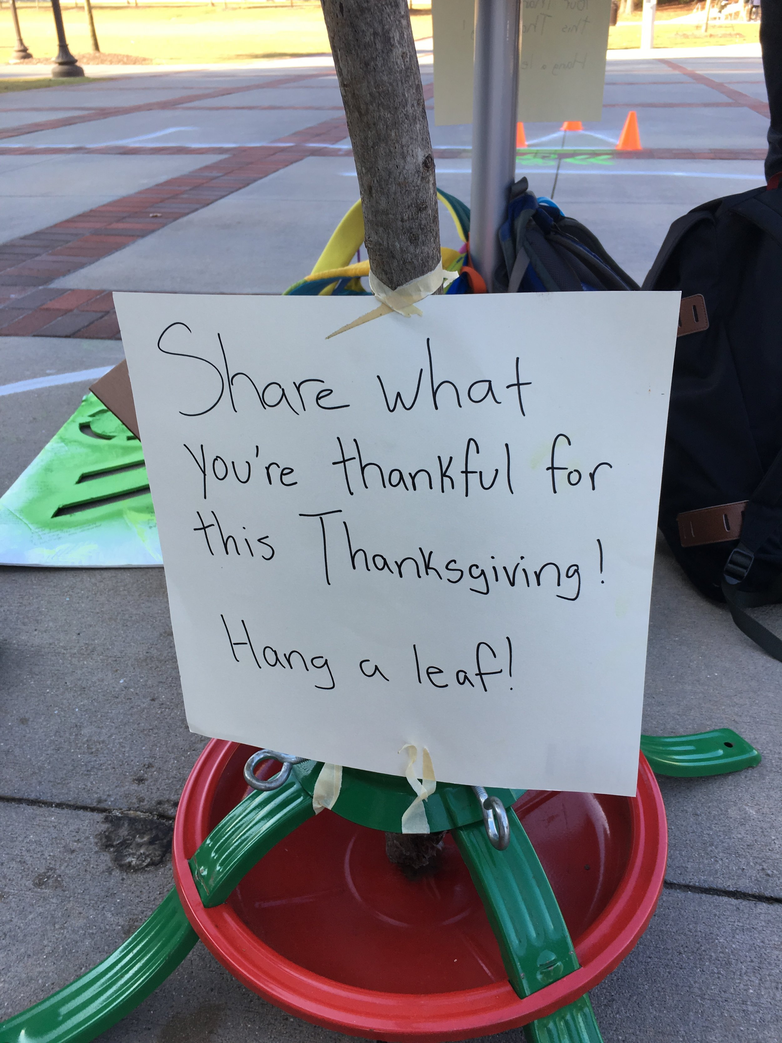 A sign informing people who were walking by what they could do with the tree.
