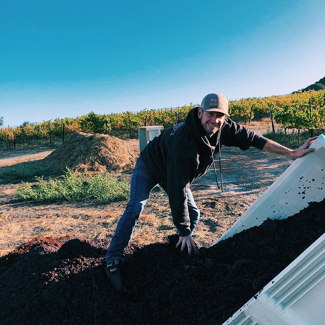 Turning waste streams into energy streams 😎🤘🏼one bin at a time, our pressings are returning back to the vineyard to become next year's compost. The circle continues... thank you for the extra muscle 💛🙏🏼 @scar_of_the_sea #biodynamicfarming @demeter_usa