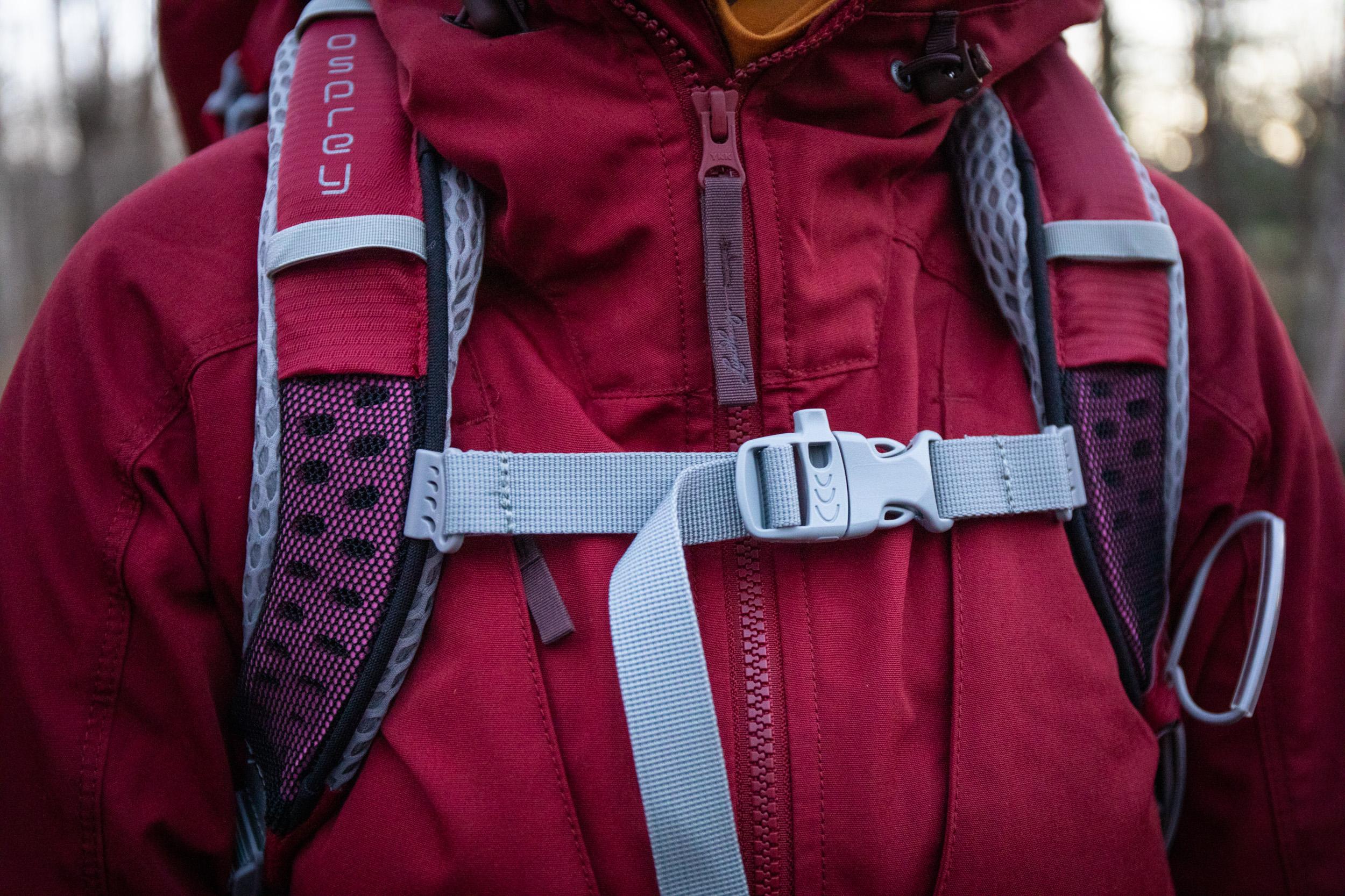 Villikettu-Osprey-lähi2.jpg