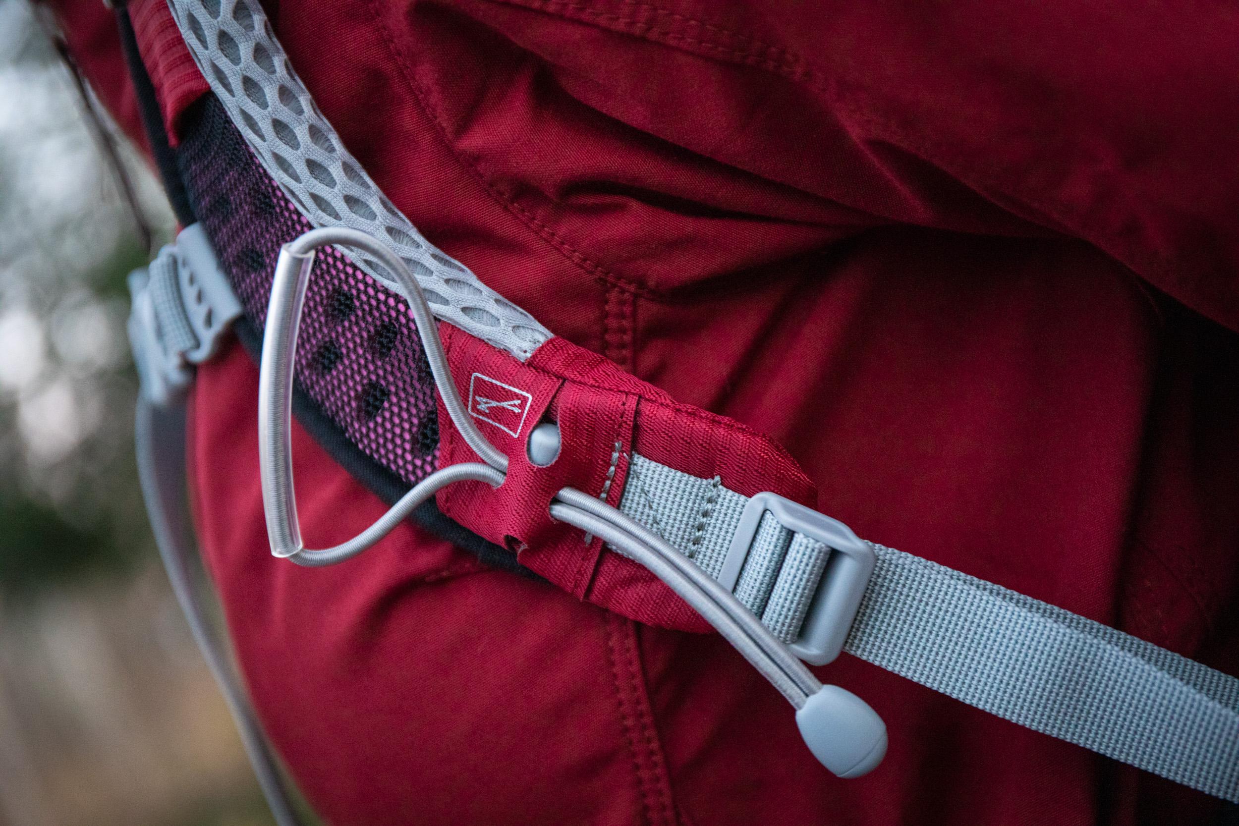Villikettu-Osprey-lähi3.jpg