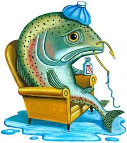 fish pain