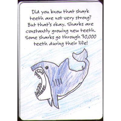 kids-proecting-sharks.jpg