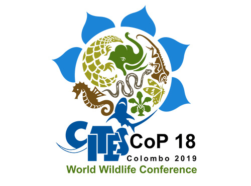 sri-cities-cop18.jpg