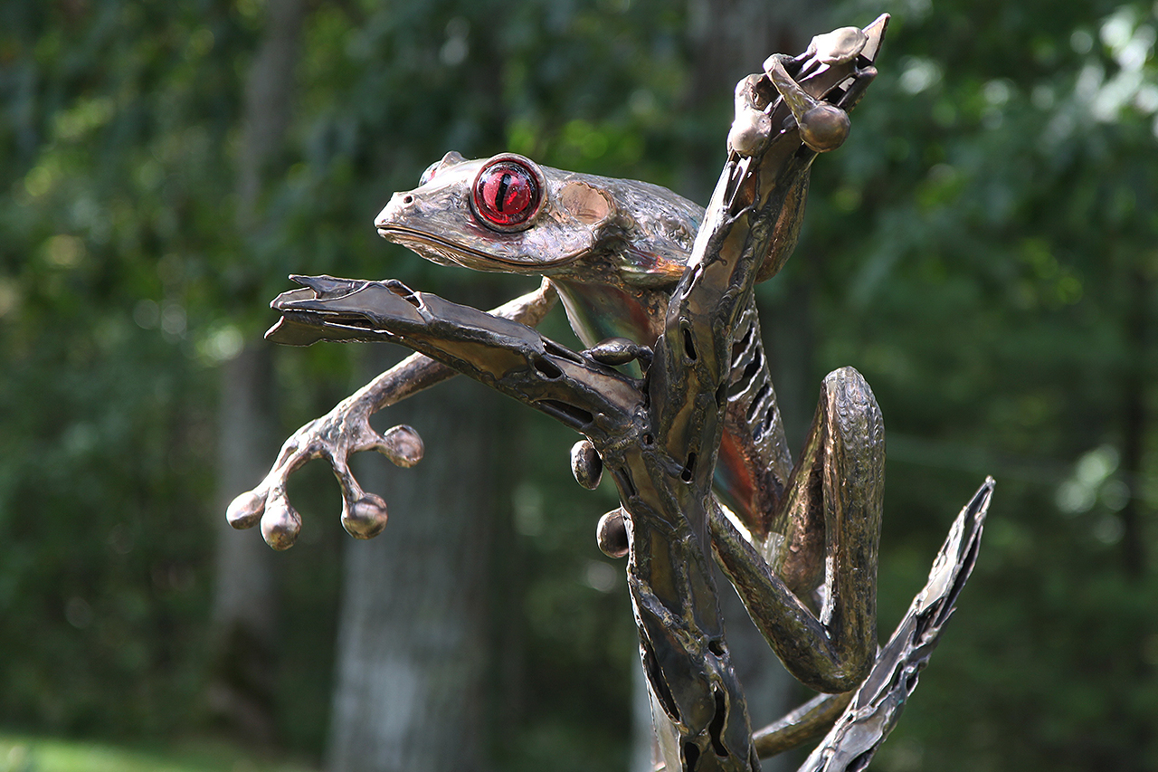 red eyed tree frog sculpture by Chris Williams