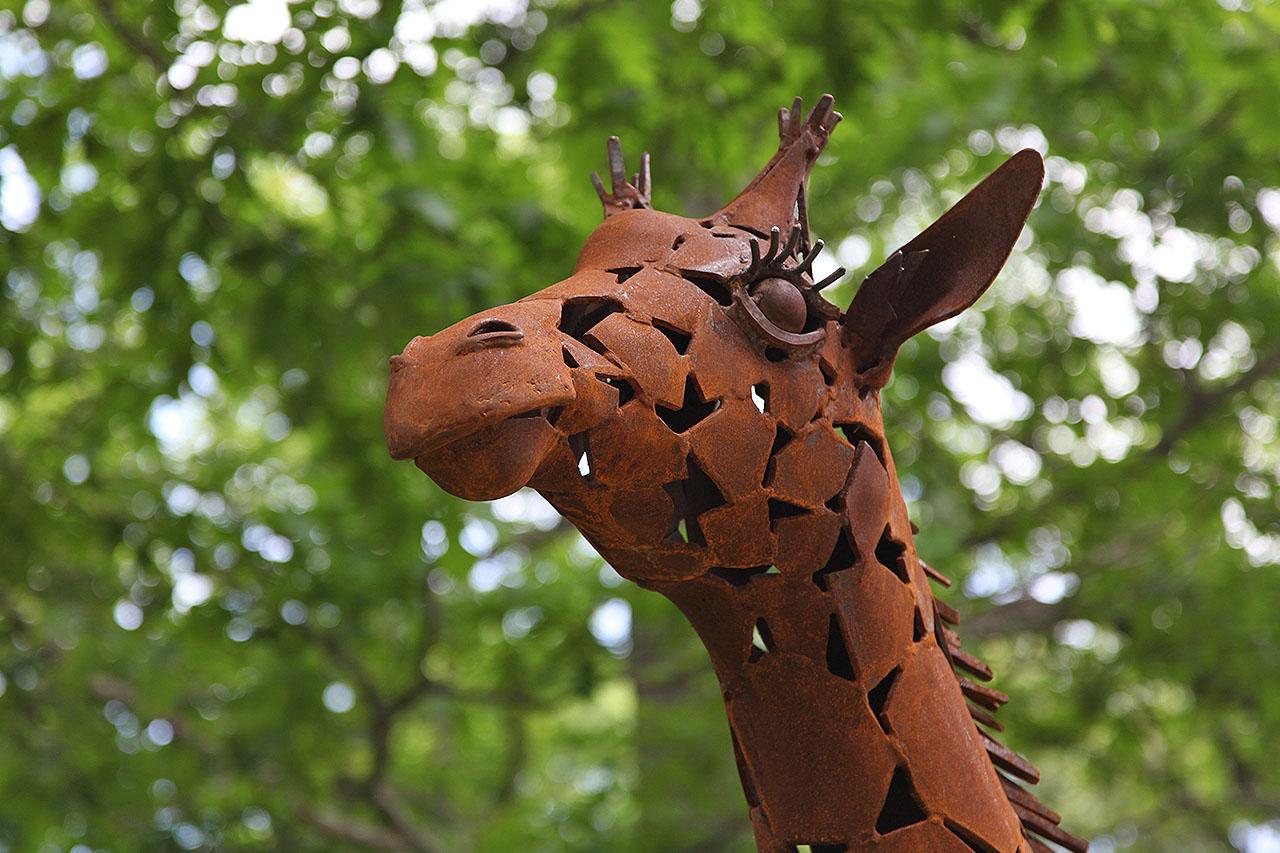 Baby Giraffe Six Flags.jpg