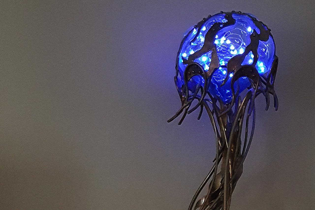Jellyfish lit by C Williams.jpg