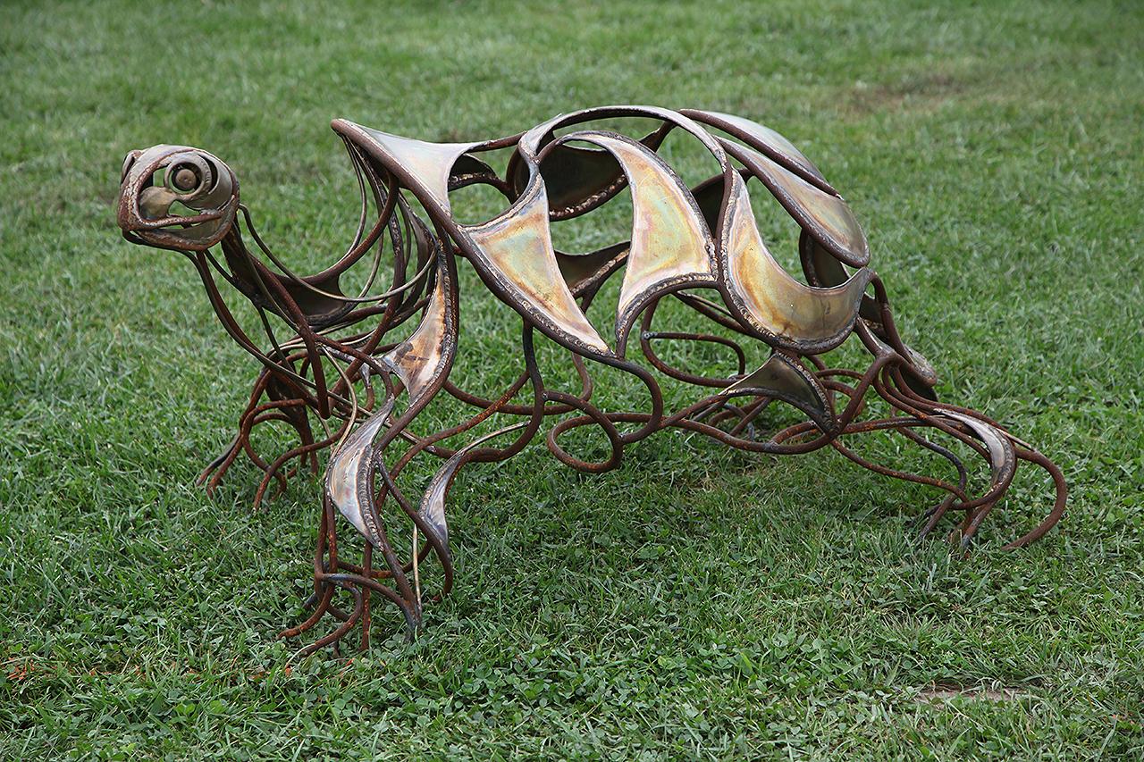 Turtle left Chris Williams.jpg, turtle sculpture, chris williams turtle sculpture, bronze turtle sculpture, steel turtle sculpture, tortoise sculpture, galagopos turtles
