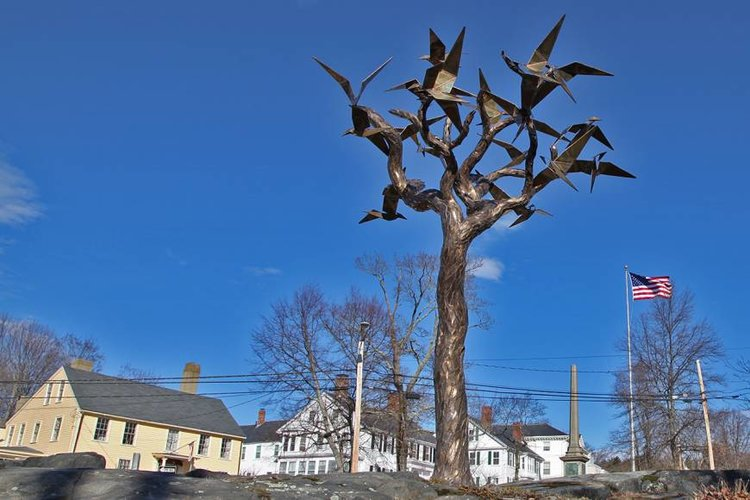 TreeSculptureChrisWilliamsSculpture.jpg