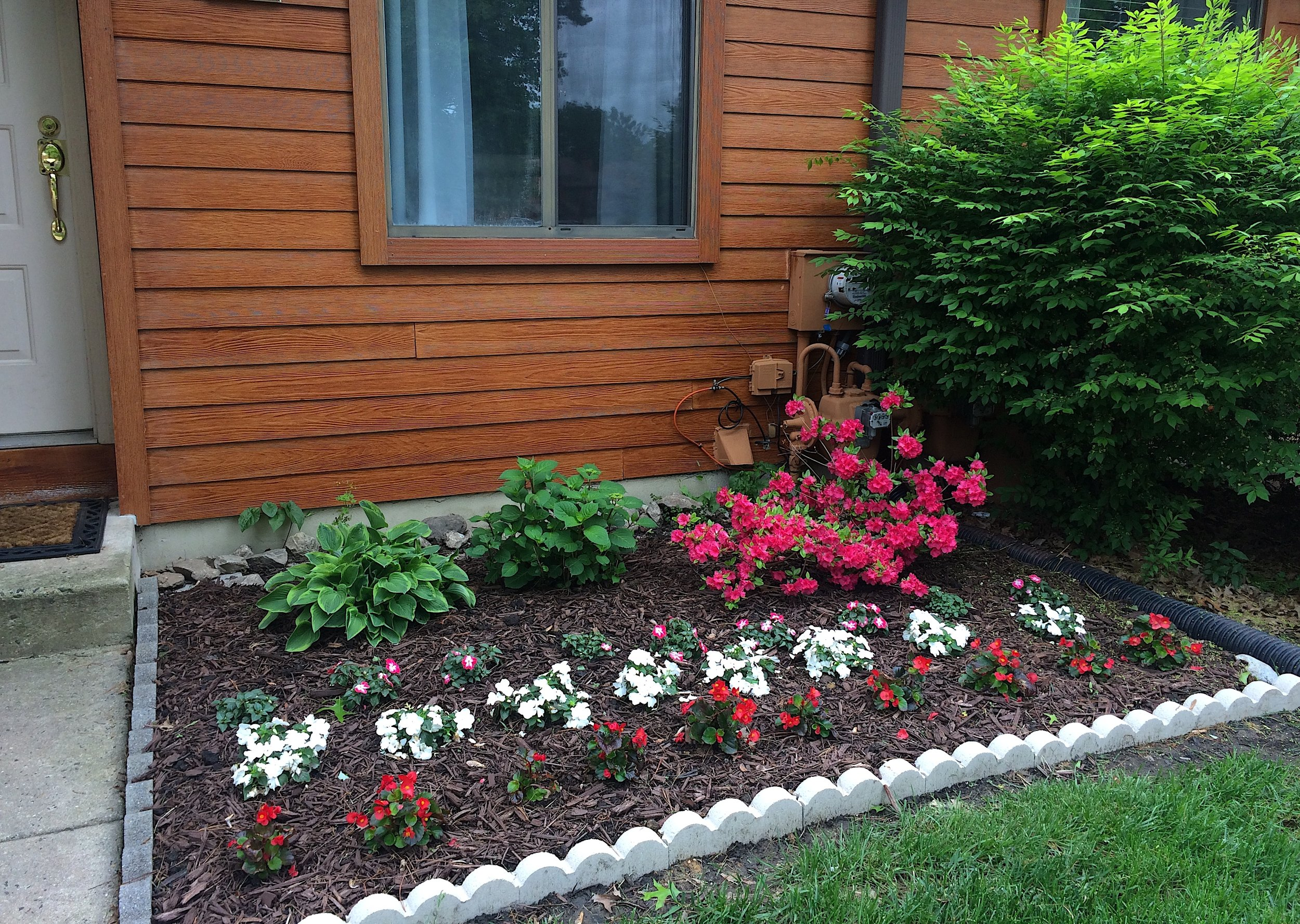 Our front yard last May. Part of our home story is that we are working on becoming good gardeners!
