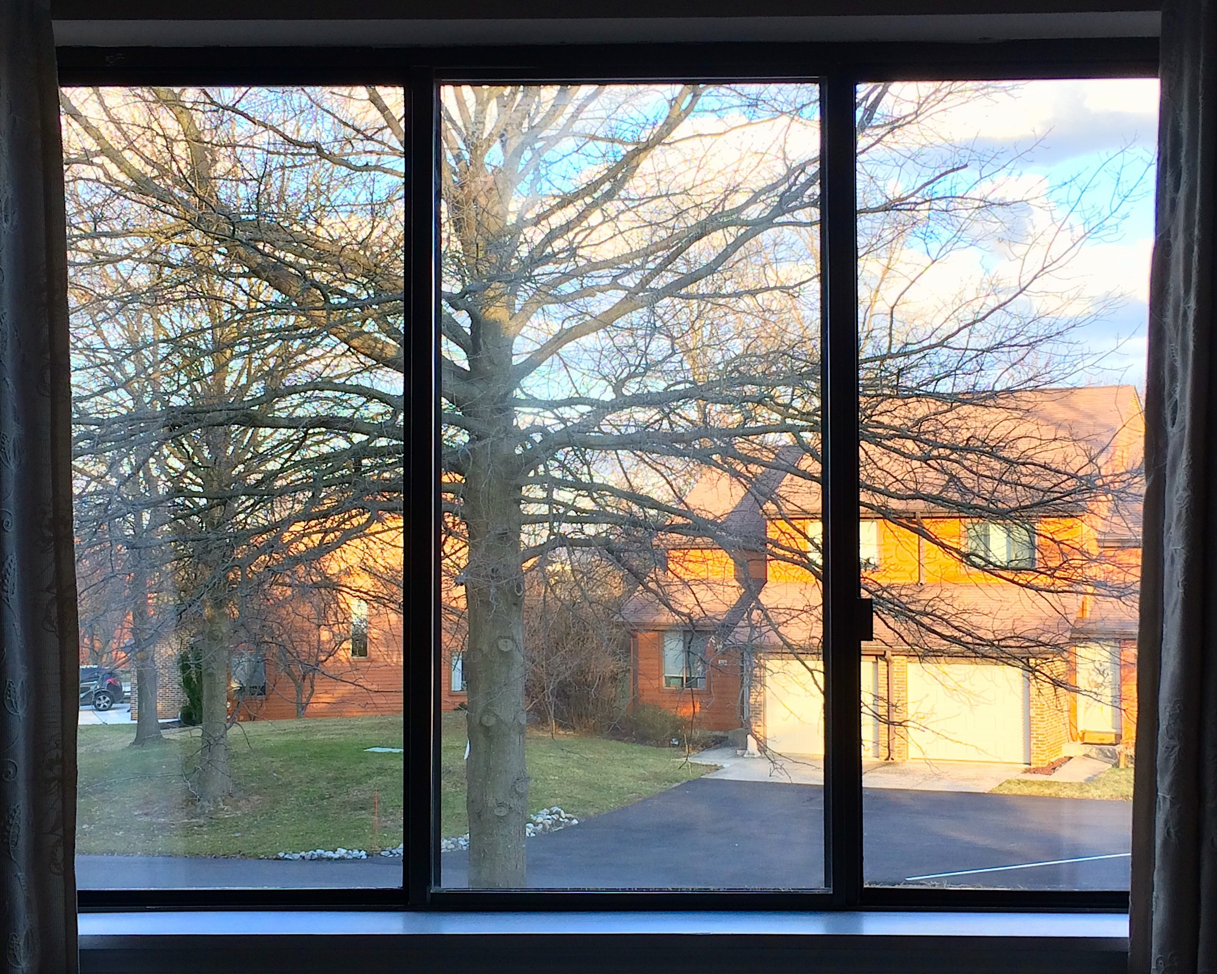 View from our bedroom window of one of my favorite trees in early spring.