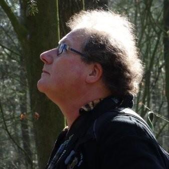 Theo Verstrael