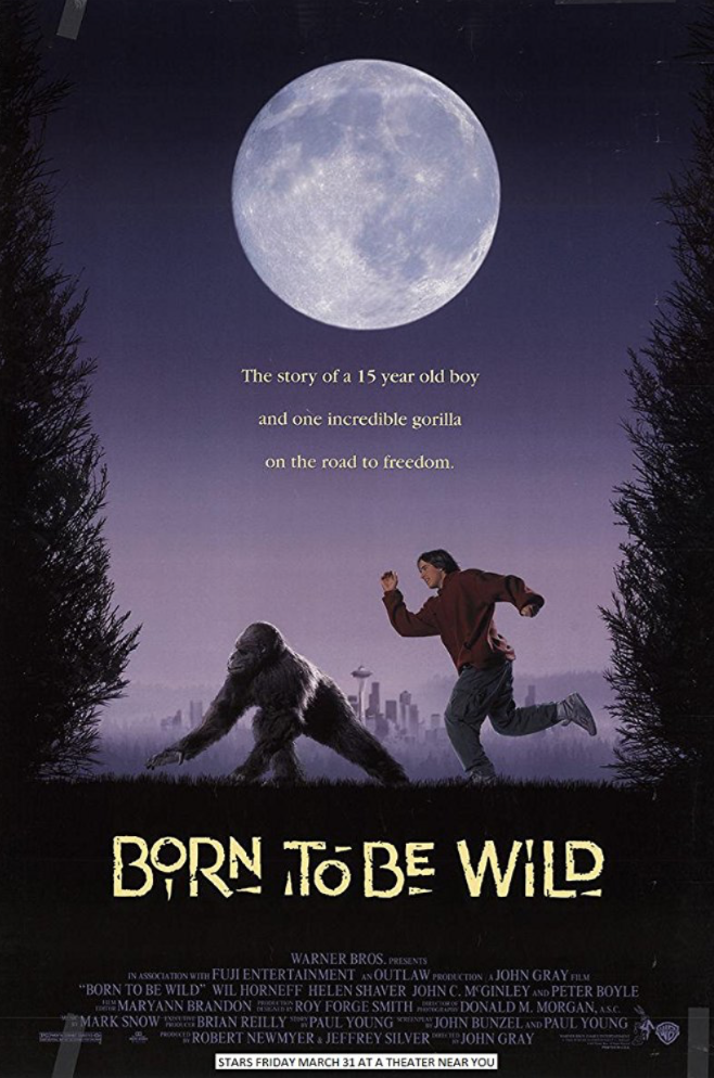 - POSITION: ProducerSTUDIO: Warner BrosYEAR: 1995GENRE: Adventure, Comedy, DramaPLOT: Rick Heller is a juvenile delinquent who keeps getting himself into trouble. To keep him out of trouble his mother puts him to work cleaning the cage of a gorilla, Katie who she's teaching to communicate through sign language. When the owner of the gorilla takes her back to become a flea market freak Rick takes it upon himself to break Katie out and take her on an adventureous journey to get her out of the country.DIRECTOR: John GrayCAST: Wil Horneff, Helen Shaver, John C. McGinleyLOCATION: Hawaii, Washington, USAIMDBIMDB PROTRAILERBOX OFFICE MOJOSTREAMING