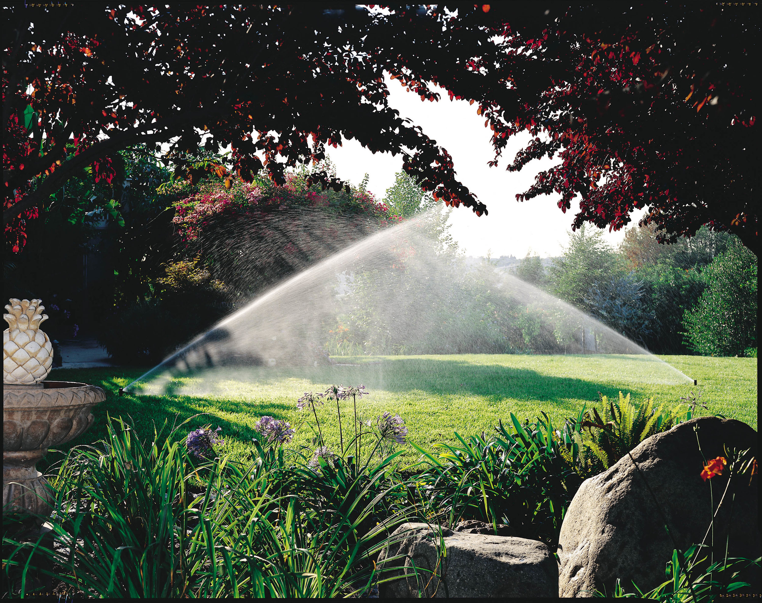 Sprinkler Repair and Installation - Servicing and repairing all brands of sprinkler systems and installing industry leading RainBird products, all backed by an unbeatable warranty.