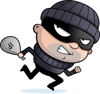thief_IP-400.jpg