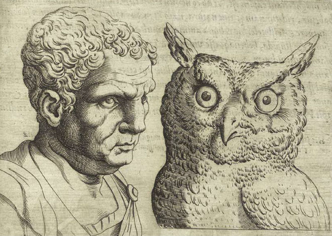 A comparison of a man to an owl, implying that the man had the personality of an owl. From Giambattista della Porta:    De humana physiognomonia   .