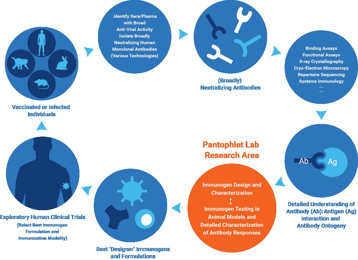 Pantophlet-research-diagram.png