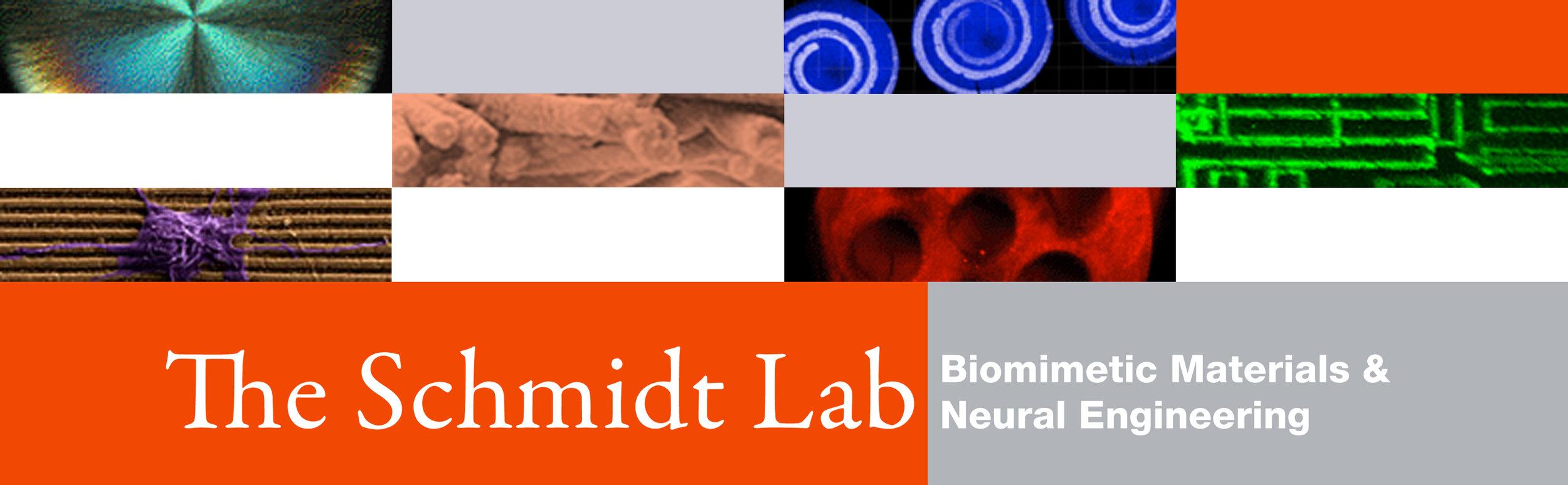 UF BME Schmidt Lab8-13.jpg