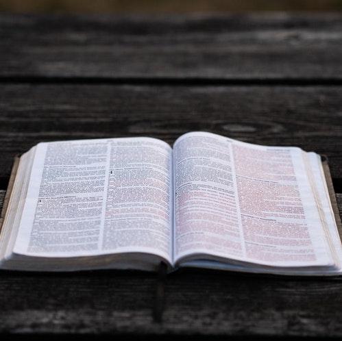 Bible Studies on Forgiveness - Lifeway.com