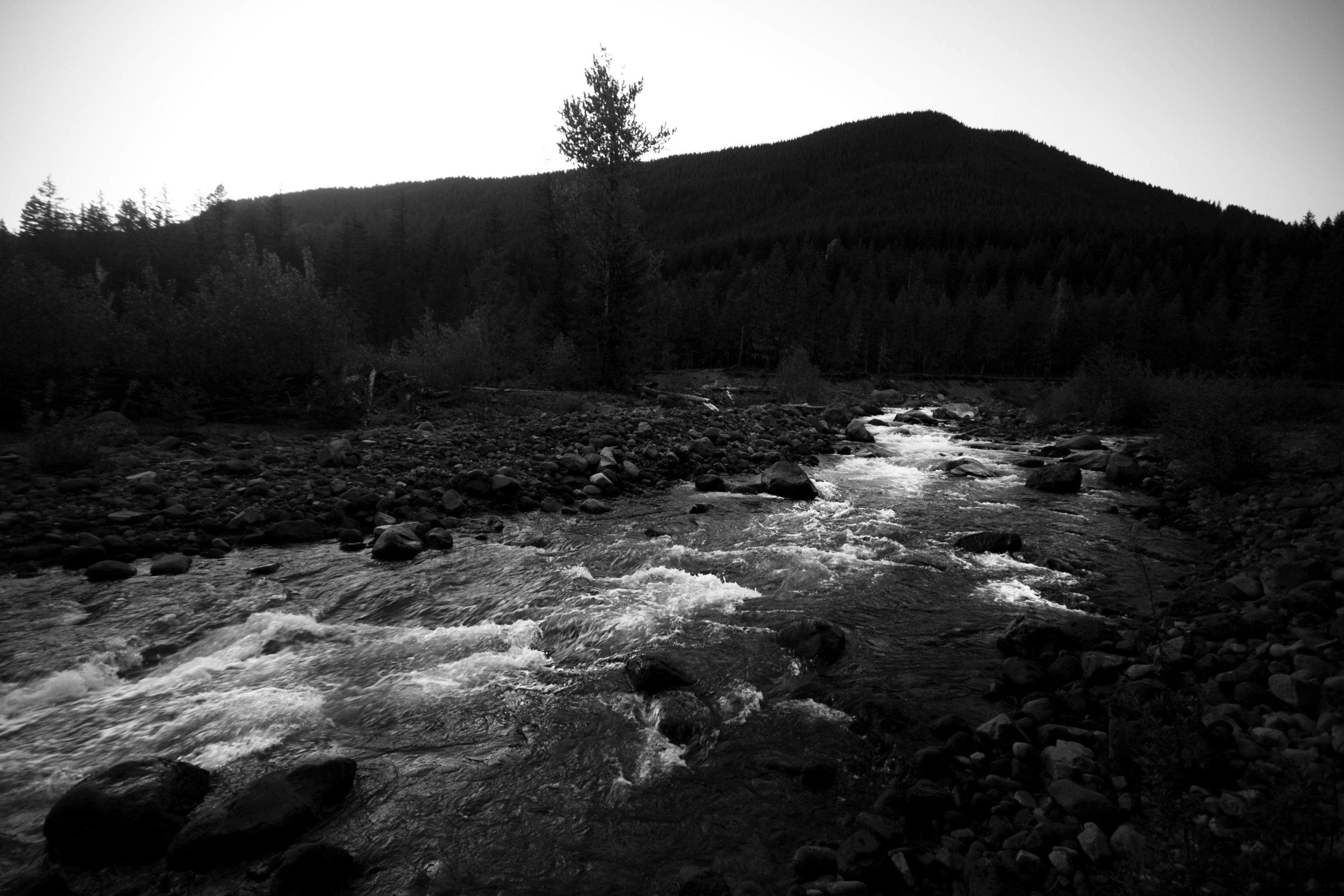 river sillhouette.jpg