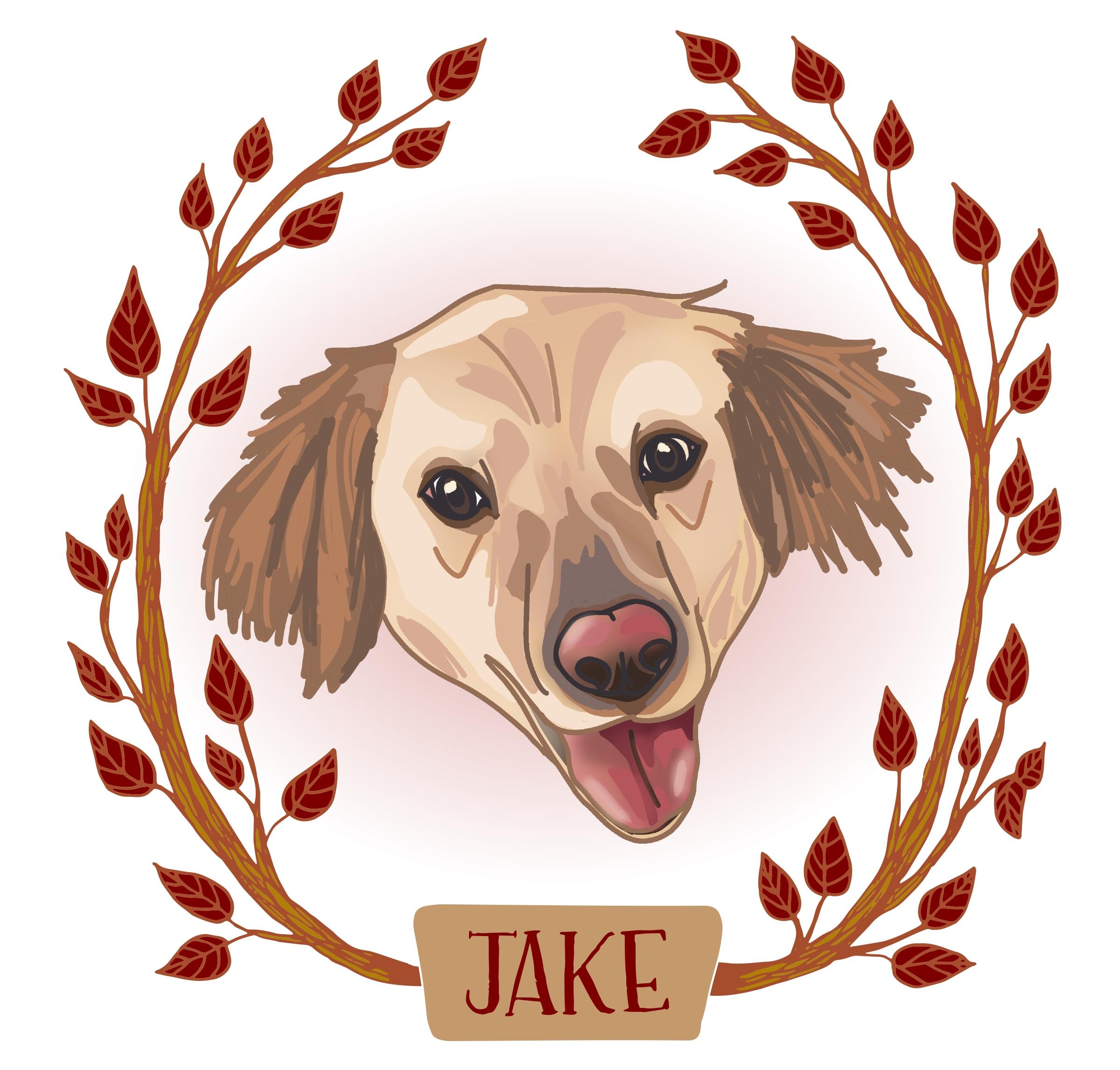 Final Jake portrait.