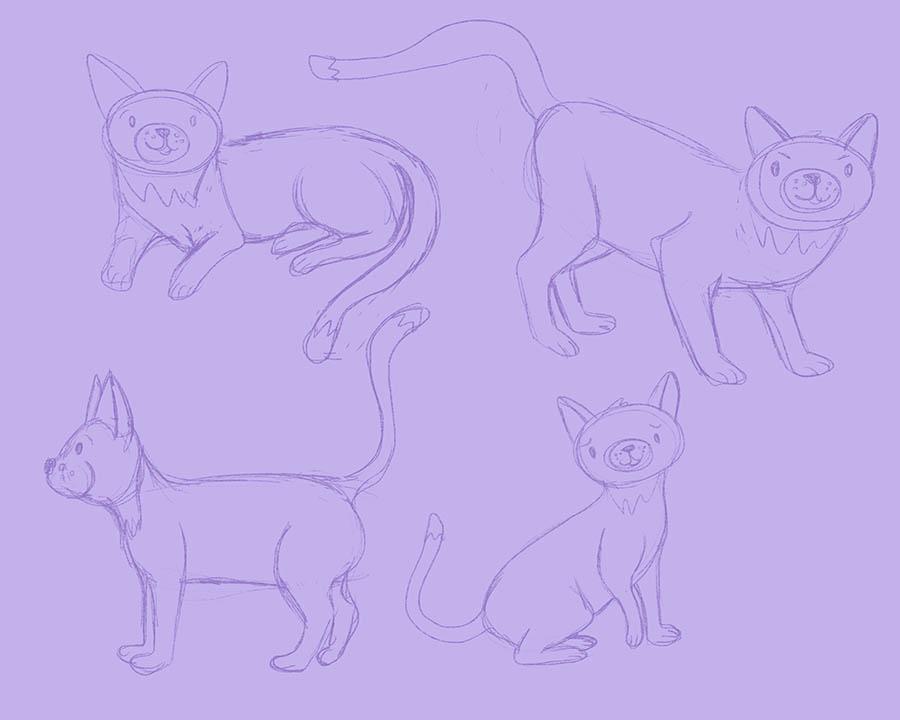 Initial cat sketches…