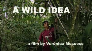 Wild-Idea.jpg
