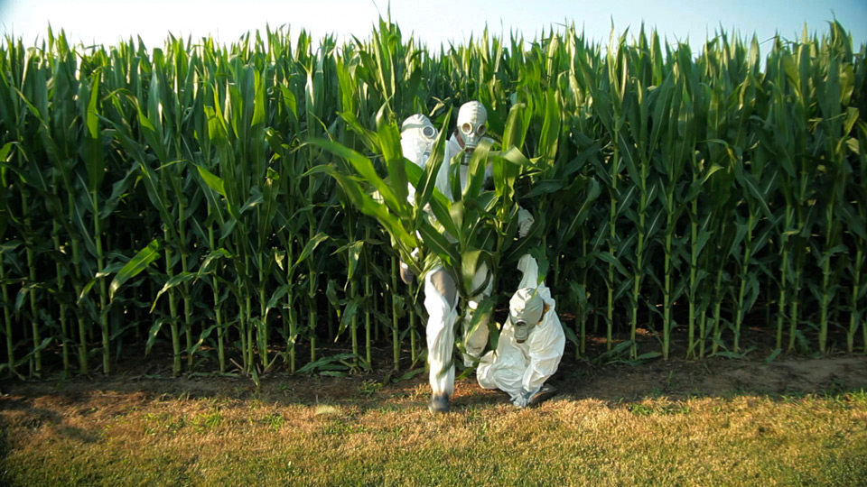 gmo-omg-corn.jpg